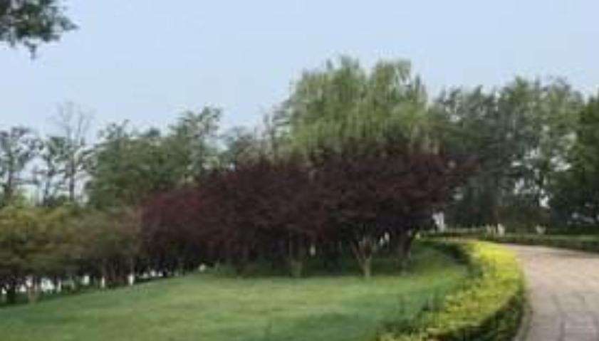 房山区青龙湖镇开展拉练检查提升人居环境质量