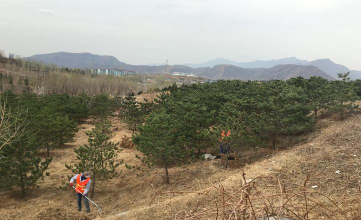 房山区张坊镇多举措做好清明期间森林防火工作