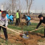房山区窦店镇开展义务植树活动