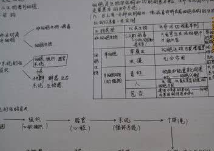 2019年高考语文作文押题素材与命题解析
