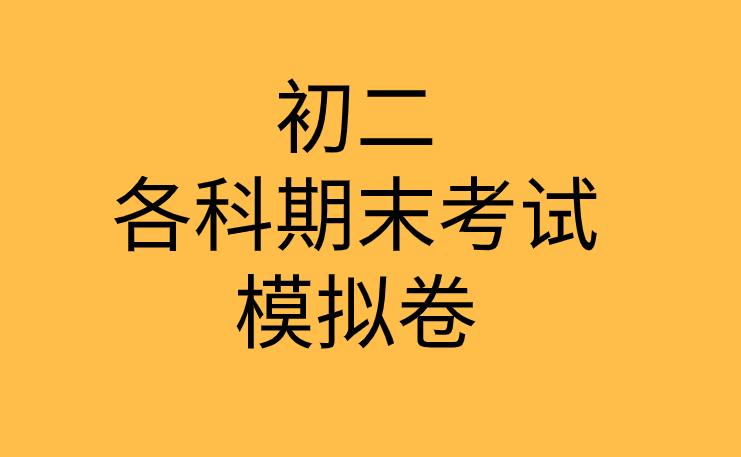 人教版2019-2020年初二政治下册期末考试模拟测试卷